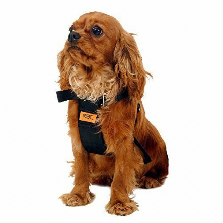 RAC Dog Car Travel Harness Black Adjustable Size Small Yorkshire Terrier